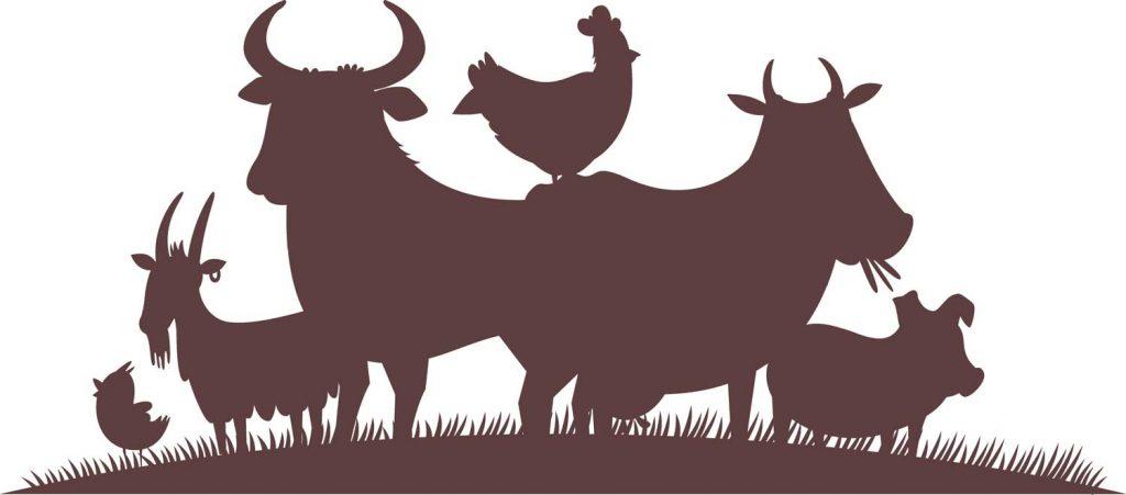 Buy livestock farming online
